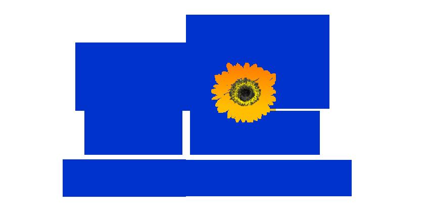 Immobilien Verkaufen Dresden | Wohnung Verkaufen Dresden | Eigentumswohnung Verkaufen Dresden | Haus verkaufen Dresden ||| Schmidt Immobilien